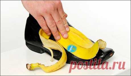 15 невероятных способов применения банановой кожуры, о которых вы точно не знали Как ни странно это прозвучит, но банановая кожура не менее ценна, чем сам банан.Поэтому не стоит торопиться и выбрасывать её в мусорное ведро.Предлагаем 15 способов её применения, о которых вы даже ...