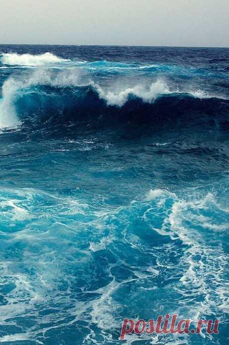 Владимир Высоцкий  Мы говорим не «штормы», а «шторма» — Слова выходят коротки и смачны. «Ветра» — не «ветры» — сводят нас с ума, Из палуб выкорчёвывая мачты.  Мы на приметы наложили вето — Мы чтим чутьё компасов и носов. Упругие, тугие мышцы ветра Натягивают кожу парусов.  На чаше звёздных — подлинных — Весов Седой Нептун судьбу решает нашу, И стая псов, голодных Гончих Псов, Надсадно воя, гонит нас на Чашу.  Мы, призрак легендарного корвета, Качаемся в созвездии Весов — И...