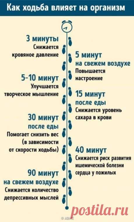 В чем польза обычной ходьбы