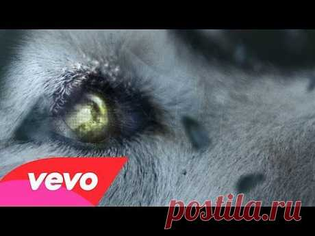 ▶ David Guetta - She Wolf (Falling To Pieces) ft. Sia - YouTube