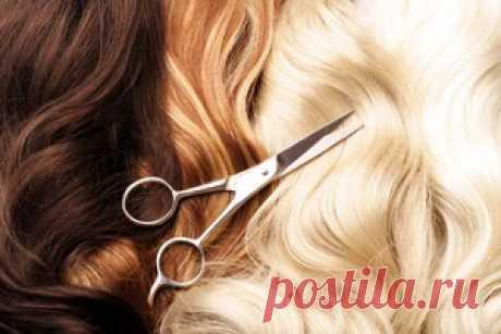 Пшеница, желатин и др... наши волосы этого достойны!: Группа Прически и уход за волосами