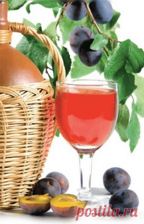 El vino de ciruelo en las condiciones de casa la receta simple