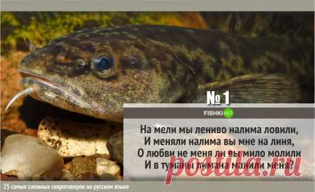 25 MOST DIFFICULT TONGUE TWISTERS IN RUSSIAN