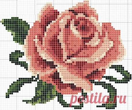 JC-Mujp9tS8.jpg (800×669)