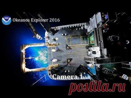 NOAA Ocean Explorer: NOAA Ship Okeanos Explorer: Live Video Stream - онлайн трансляция с Мариинской впадины