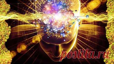 10 Вещей, отрицательно влияющих на мозг - Психология отношений