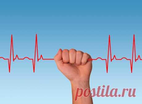 Как сохранить здоровье сердца и забыть о плохих привычках. | Все что знаю расскажу! | Яндекс Дзен