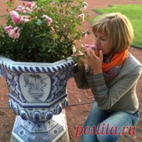 Марина Арановская
