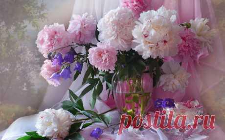 Pink-peonies-flowers-vase_1920x1200.jpg (1920×1200)