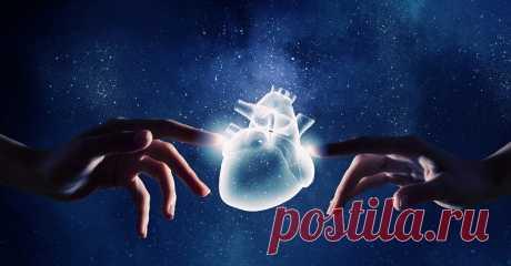 Кардиолог Александр Недоступ: «Самые большие раны человеку наносятся дома!» - Женский Журнал Сердце любит и надеется, сердце ранит и принимает, бывает ледяным, а бывает горячим, как пламя. Издавна сердцу придают значение не только важнейшего мышечного органа, но и органа познания, органа чувств и религиозного восприятия. Сердце занимает центральное место в духовной жизни человека, о нём без конца говорится в Библии, а святые отцы называют его «сокровищницей разума».«Наше …