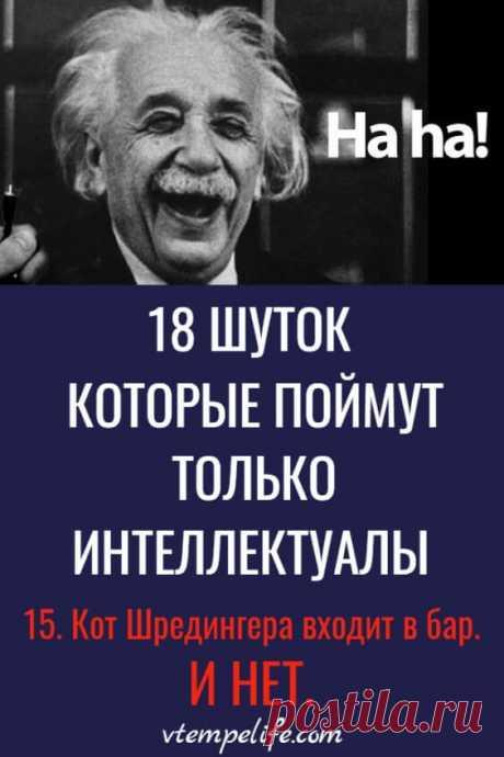 18 шуток, которые поймут только интеллектуалы. №4 я не понял! | В темпе жизни