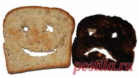 Врач объяснил, как подгоревший хлеб и любовь к сыру влияют на долголетие