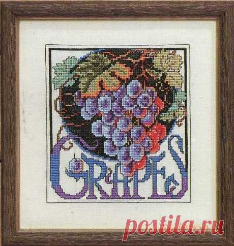 Gallery.ru / Фото #19 - Цветочные семена - Clematis