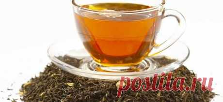 Чай не только вкусный но и очень полезный напиток   Scrutor Insigth