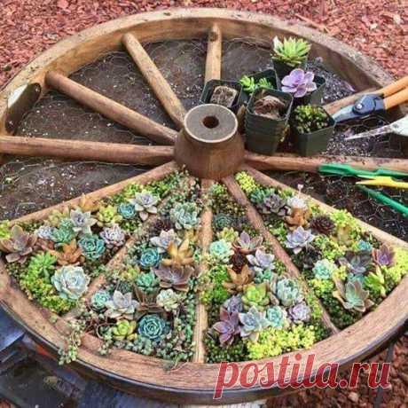 Вдохновляющие идеи клумб в колесе — Сделай сам, идеи для творчества - DIY Ideas