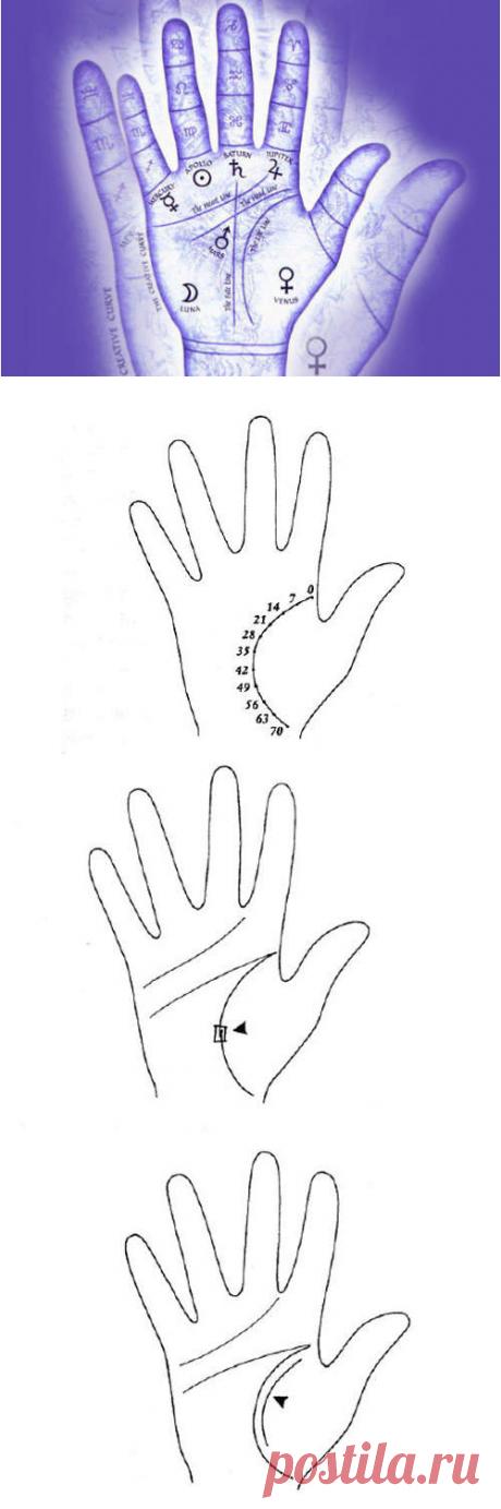 Линия жизни на руке: фотографии с расшифровкой