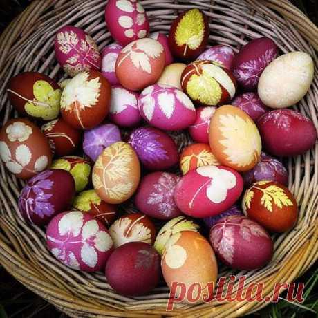 7 modos incomparables de colorar los huevos: ¡ningunos pinceles, las pegatinas … Solamente el agua y la pareja de las astucias!