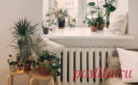 Эксперты Циан рассказали женщинам об ошибках, которых нельзя допускать при оценке квартиры | Циан.Журнал | Яндекс Дзен