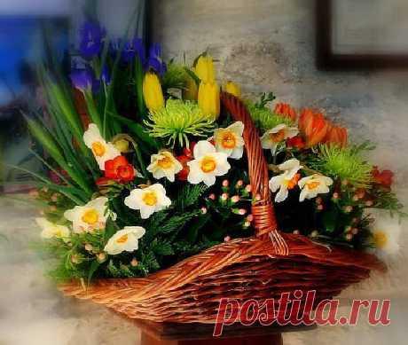 корзина прекрасных цветов