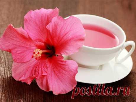 Чай каркаде: польза восточного чая