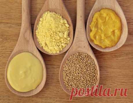 Горчица: что это такое, виды продукта и применение, рецепт приготовления в домашних условиях