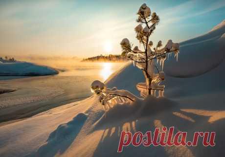 Рассвет на Ладожском озере. Автор – Фёдор Лашков: nat-geo.ru/community/user/27502 Доброе утро!