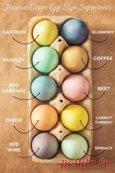 Натуральные красители для яиц из того, что есть на каждой кухне — informed news 24