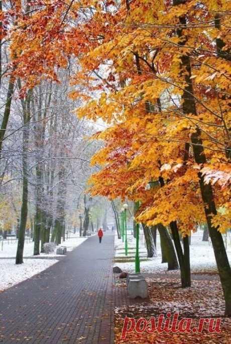 Вся наша жизнь - сплошной прогноз погоды...  То солнечно, то пасмурно опять -  Наверно, так задумала Природа,  Чтобы ценить могли мы Благодать!