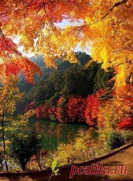 Осень…она мне подарила самые важные чувства…  ОСЕНЬ(Как грустный взгляд…)   Восторг!!! И сердце щемит от красоты природы и стихов И. Тургенева. Боже, какая благодать!
