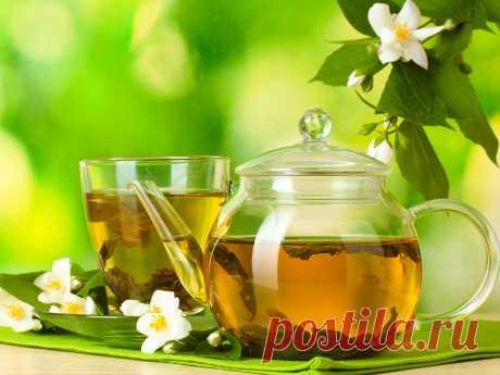 Зеленый чай – отличный напиток, который способен составить конкуренцию привычным для многих черному чаю и кофе. Есть множество причин, чтобы полюбить этот напиток. Каковы же они?