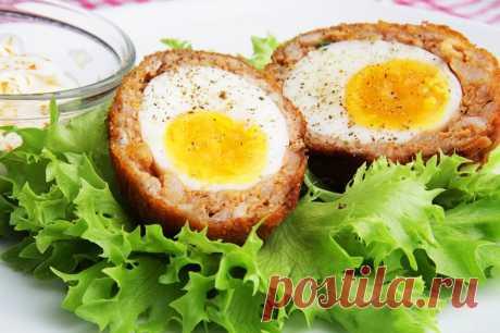 Яйца по-шотландски — Sloosh – кулинарные рецепты