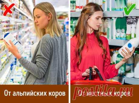 9вещей, которые стоит знать, чтобы непопасться наудочку продавцов икупить качественные продукты