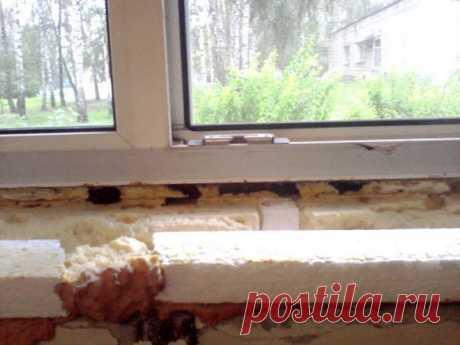 Как по-быстрому утеплить пластиковые окна на зиму, чтобы не дуло: делюсь схемой | Домовой | Дизайн интерьера и ремонт