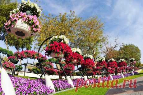Вальс  цветов...