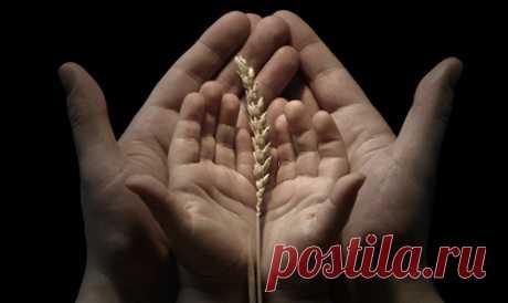 Молитва за свой Род - Эзотерика и самопознание