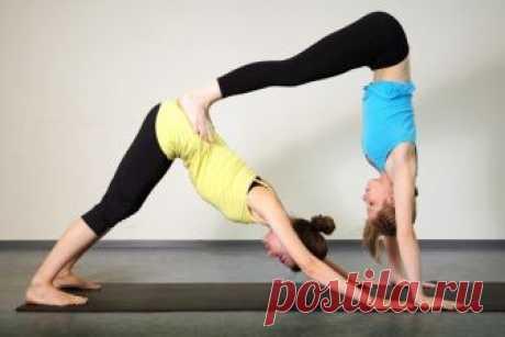 Хатха - йога. Что такое хатха йога? Смотри видео уроки бесплатно!