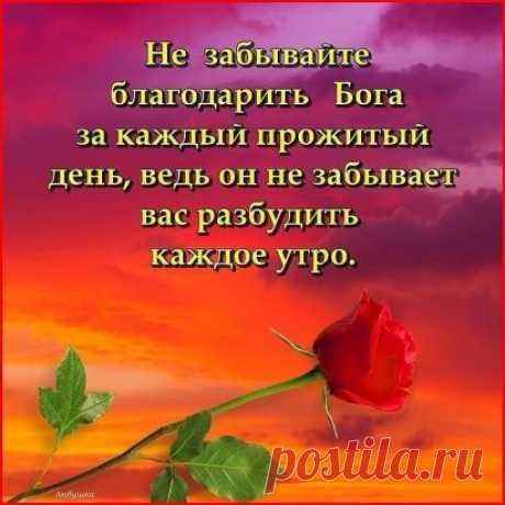 За каждый шаг, за каждый вздох,  За то, что дал мне Бог.  За боль, за счастье, за удачу,  За то что я смеюсь и плачу,  За то что я ещё люблю,  За всё Тебя Господь благодарю!