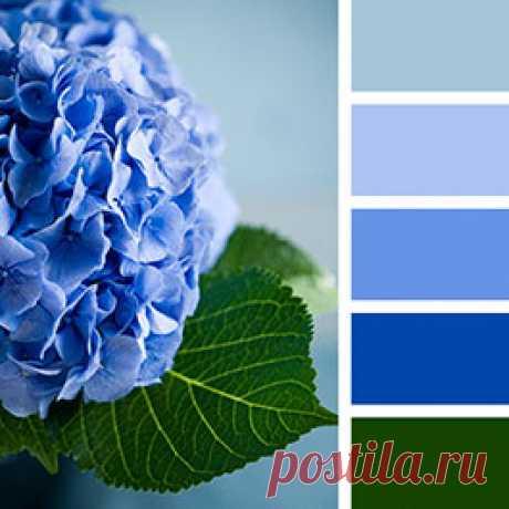 Как голубой цвет может  сделать любой интерьер в два раза более свежим и чистым? Отвечаем в статье с фотографиями голубого в интерьере квартиры  #голубойвинтерьере#голубойцветпалитра#голубойсочетания#StoneFloorКазань