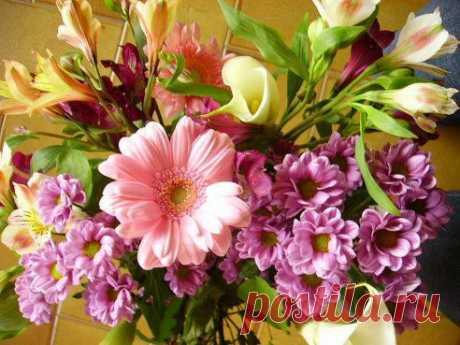 Хотите чтобы Вам приходили  красивые  цветы на страничку  ВАМ СЮДА  └─► ok.ru/flowerlove