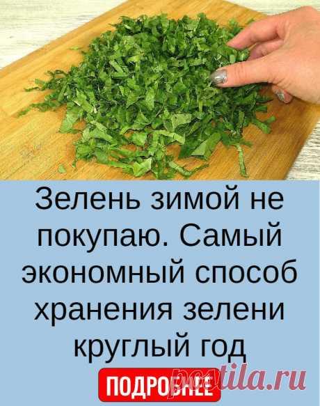 Зелень зимой не покупаю. Самый экономный способ хранения зелени круглый год