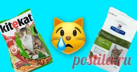 5 худших марок корма для кошек, в которых нашли пестициды Очень вредно.