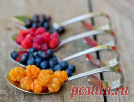 Храним сезонные фрукты и ягоды правильно! Для того, чтобы надолго сохранить свежесть и вкус собранного урожая, одного лишь хранения в холодильнике недостаточно. К каждому фрукту нужен свой подход.  Чтобы дольше сохранить урожай ягод (включая …