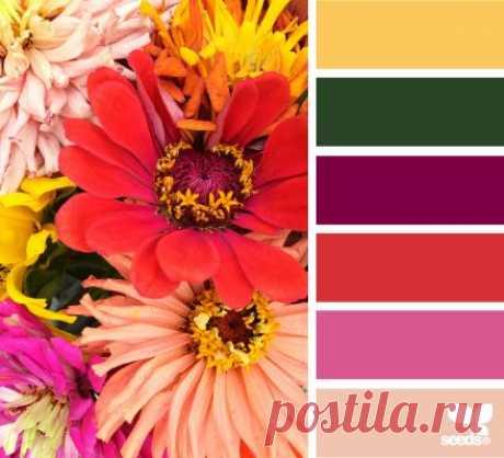 сочетания цветов. ярко и оптимистично!.