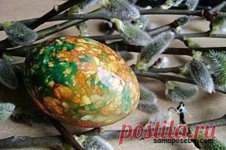 Мраморные яйца. Мастер-класс к Пасхе Эти красивые, яркие и очень необычно окрашенные пасхальные яйца делать совсем несложно.   Ингредиенты: -Яйца -луковая шелуха -зеленка (бриллиантовый зеленый) -кусочки марли или капрона  Луковую шелуху порезать ножницами или покрошить пальцами.  Порезать марлю на небольшие квадраты. Окунуть яйцо в воду и вывалять в шелухе.  Аккуратно положить его на марлю и завязать ниточкой.  Положить завернутые яйца в кастрюльку, залить водой, чтобы он...