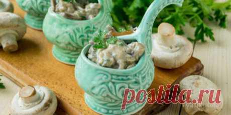 Сливочный грибной соус. Ароматный и нежный грибной соус идеально сочетается со многими рыбными и мясными блюдами.