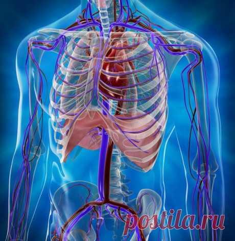 Как мы губим свое здоровье дыханием / Будьте здоровы