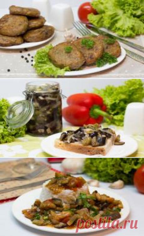 Блюда из баклажанов, рецепты с баклажанами | Все Блюда