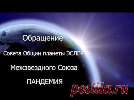 #61 Обращение совета общин планеты Эслер (Межзвёздного союза) о пандемии коронавируса (COVID-19)