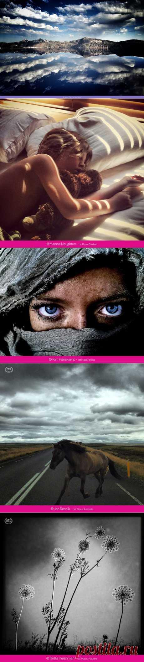 iPhone Photography Awards 2013 : НОВОСТИ В ФОТОГРАФИЯХ