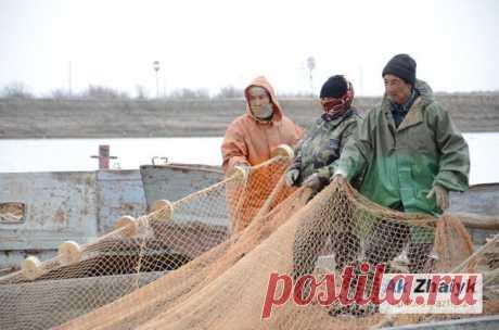 Министр экологии обрадовал рыбаков — новости на сайте Ак Жайык